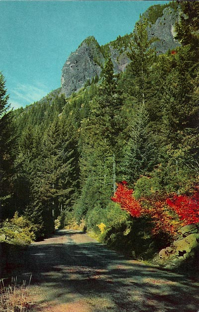 This postcard image of McKenzie Pass dates from the 1960s.