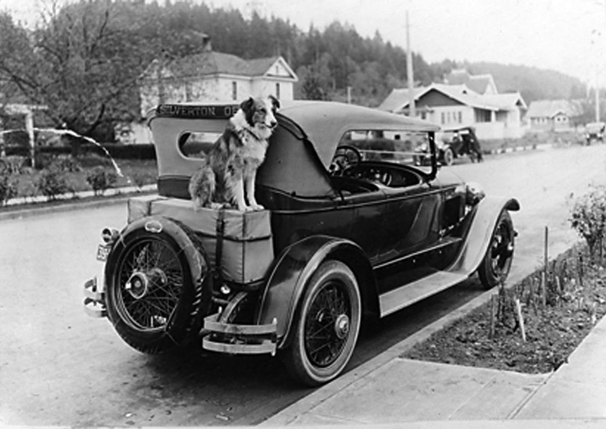 Bobbie The Wonder Dog of Oregon!