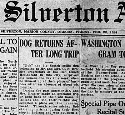 The Silverton Appeal newspaper coverage of Bobbie the Wonder Dog.