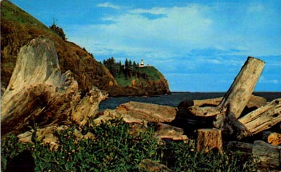 Postcard image showing a pile of driftwood with the Cape Disappointment Lighthouse in the background.