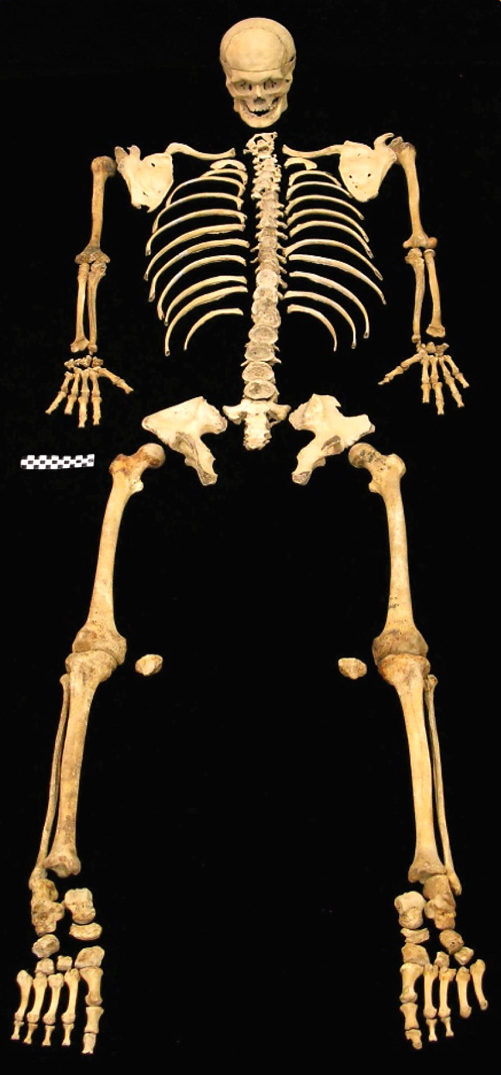 Mysterious skeletons of Oregon If only these bones could speak