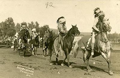Cayuse Tribe S World Beating Ponies Are Now Very Rare