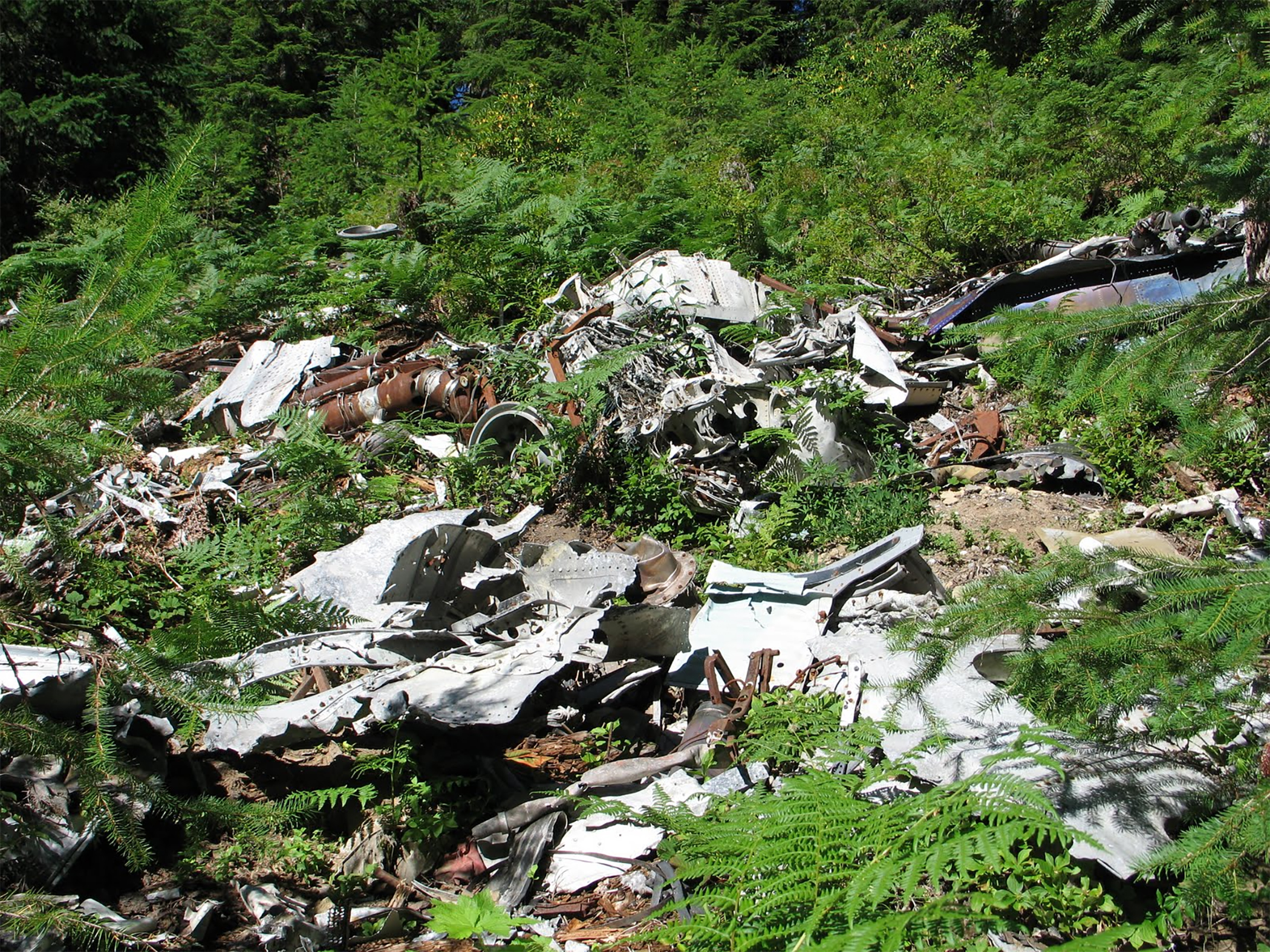 Oregon's worst plane crash is also its most mysterious | Offbeat